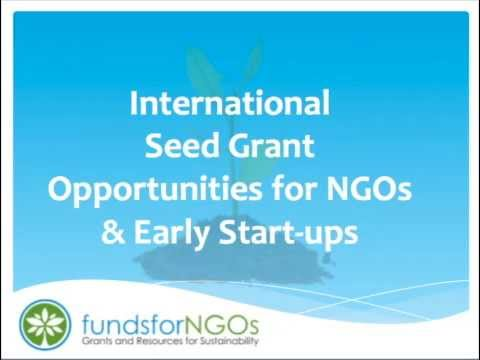 International Seed Grant Opportunities for New NGOs & Early Start-ups