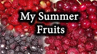 ORGANIC GARDEN Summer HARVEST. Mouthwatering Strawberries, Blackberries, Cherry and Raspberries