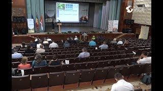 Cultivarea alunului ar putea deveni o istorie de succes pentru agricultorii din Moldova