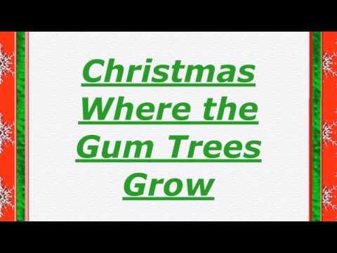 Christmas Where the Gum Trees Grow lyrics in G