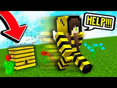 KILLER BEE PRANK! (Minecraft Boundless Modded Survival #14)