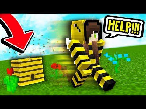KILLER BEE PRANK! Minecraft Boundless Modded Survival #14