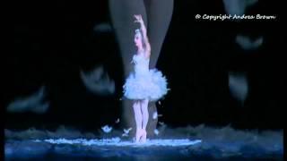 Les  Ballets Trocadero - The Dying swan - Der Sterbende Schwan