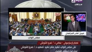 فيديو.. محامي الشوبكي : سيتم إعلان أحقية موكله فى البرلمان خلال الأيام