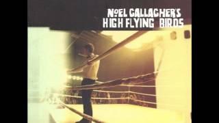 Noel Gallagher's High Flying Birds - Dream On (Clean Radio Edit)