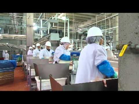 Seaboard Foods Management Trainee Program