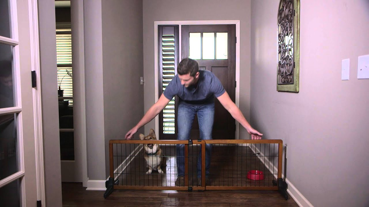 Carlson Design Studio Free Standing Wooden Pet Gate - YouTube