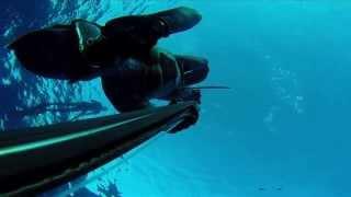 Подводная охота, дайвинг, фридайвинг, путешествия, прикдючения под водойй(Подводная охота, трофейная подводная охота, обучение, видео. http://apnos.kiev.ua/ Практика подводной охоты.Речная,..., 2014-12-29T16:02:12.000Z)