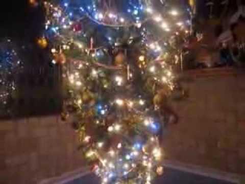 Nuestro Árbol de Navidad colgado del techo de casa