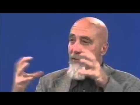 Stuart Hameroff explains quantum consciousness w o the interviewer