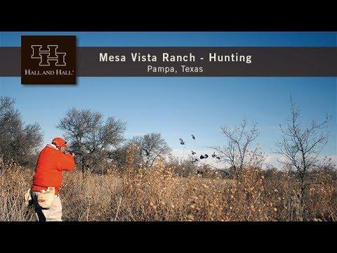 Mesa Vista Ranch, Hunting - Pampa, Texas