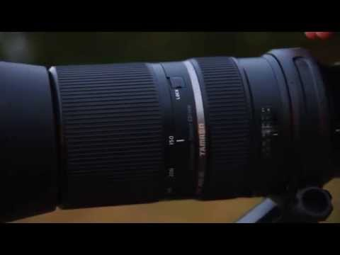 A Closer Look at the Tamron SP 150-600mm Di VC USD [Model A011]