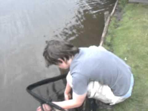 Day Session Fishing: Poynton Pool