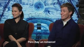 ANIMALES FANTÁSTICOS Los crímenes de Grindelwald ¡Alexis entrevistó a los protagonistas!