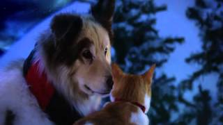 Merry Christmas Furries and friends