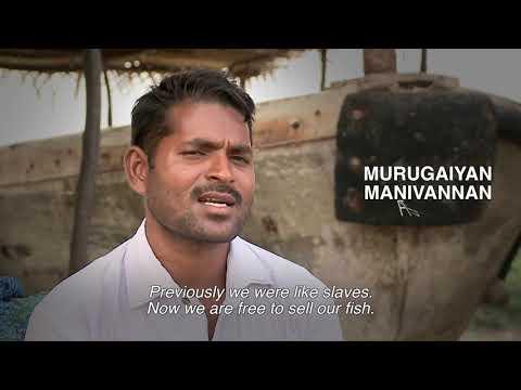 rural-solution---fish-marketing-societies-in-india
