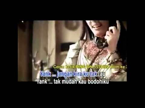 Wali Band 「 Yank 」 cover 【 R A I 】