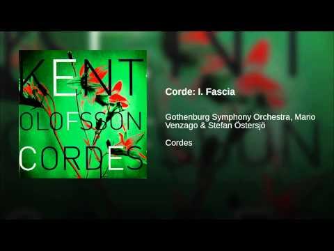 Corde: I. Fascia