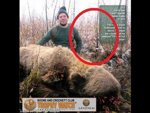 World Record 9 Foot Tall Grizzly Shot In Alaska - YouTube