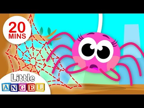 Did You See My Web? Itsy Bitsy Spider Lost her Web | Paw Patrol Chase and more by Little Angel