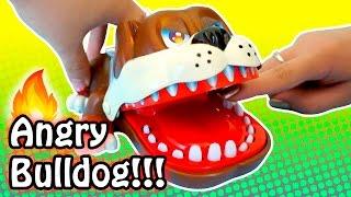 Biting Hand Angry Bulldog Game For Kids!! 두근두근 불독 게임 - Lastic Vs. Jenny - Fun Roulette Game
