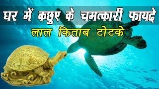 घर में कछुआ रखने के चमत्कारी लाभ और टोटके | Benefits Of Turtle Turtle Vastu In Hindi | Totke