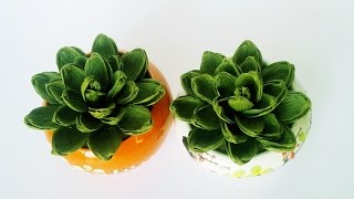 How To Make Succulent From Crepe Paper - Craft Tutorial