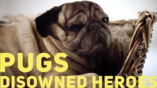 Pugs - Disowned Heroes (2011)