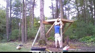 Tiny Modern Tree House- Time Lapse Build/adult Builder/inspiration  Tiny House Builder