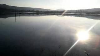 Hochwasser Heringen Werra schöne Seite