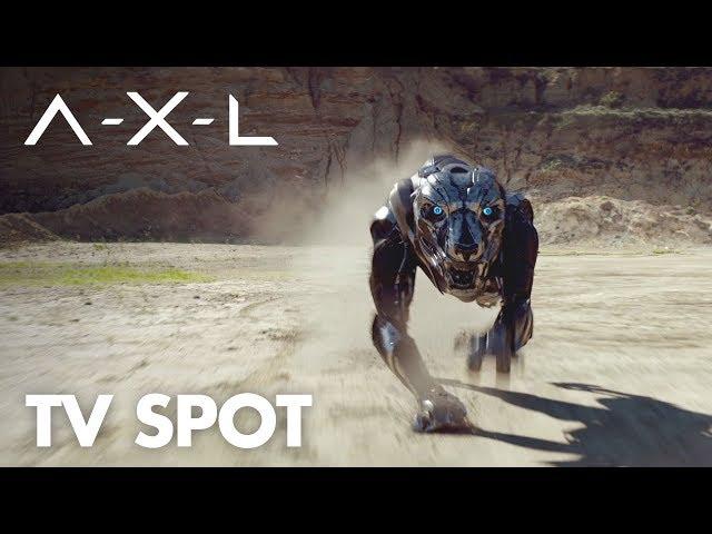 Tuna the Dog Goes High-Tech in Bizarre A X L  Vision Video