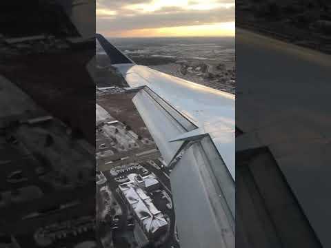 Landing At Detroit Wayne County International Airport - Livonia, MI From BHM - Birmingham, Alabama