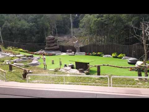 Phu Quoc 2-2016 Vinpearl Safari Xiec Thu