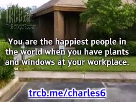 Happiness at the Workplace The Plant Factor