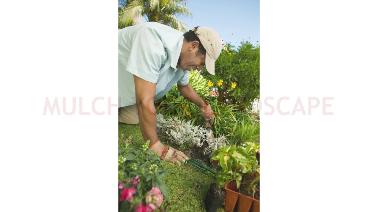 Delicieux Landscaping Contractors Las Vegas   Tips For Sustainable Gardening
