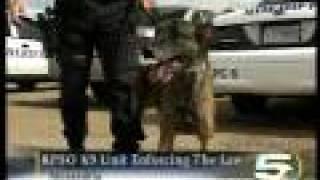 Rapides Parish Louisiana New Drug Detector Dog