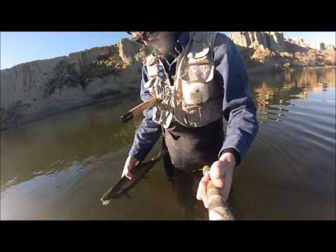FISHING CASPER, WY GREY REEF & MIRACLE MILE 2016