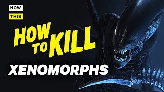How to Kill Xenomorphs | NowThis Nerd