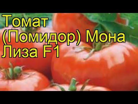 Томат Мона Лиза F1. Краткий обзор, описание характеристик, где купить семена solánum lycopérsicum