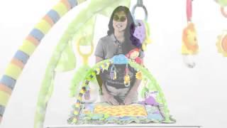 Bruin - Jungle Joy Activity Gym | Toys R Us Canada