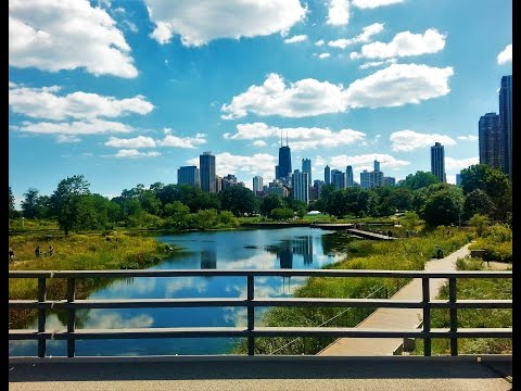 Lincoln Park Zoo Chicago from Travel with Iva Jasperson