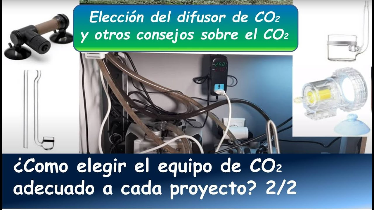 ¿COMO ELEGIR EL EQUIPO DE CO2 PARA EL ACUARIO PLANTADO? PARTE 2: EL DIFUSOR DE CO2 Y OTROS CONSEJOS