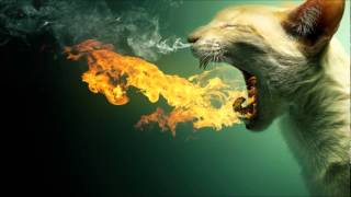 Somnus Corp & Liluca - Samskara (Jay Lumen Remix)