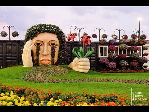 Dubai Miracle Garden 2017 | World Largest Beautiful Natural Flowers Garden 2017