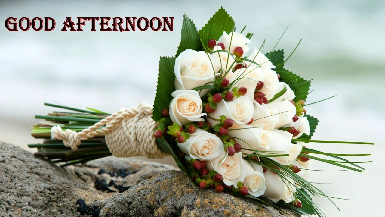 Good Afternoon Video Sms Wishes Greetings E Card Image