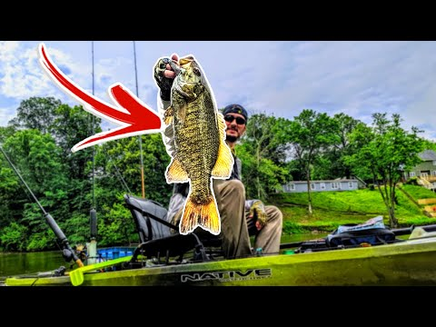Breaking Down A New River And Catching BIG SMALLIES!!