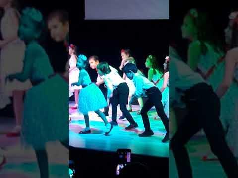 Dilvin Hint Dansi