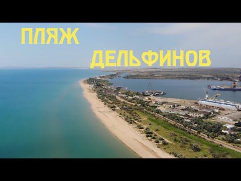 Крым 2019 | Пляж дельфинов | Аршинцевская коса | Дикий бесплатный дельфинарий | Купание с дельфинами