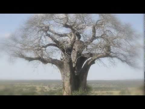 Tanzania traditional music : Naa Bua