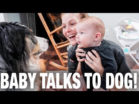 Baby Talks To Dog--Super Cute!
